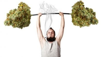 Photo of ¿Por qué muchos «weekend warriors» entrenan con marihuana?