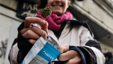 Photo of La demanda rebasó la oferta de cannabis en Uruguay