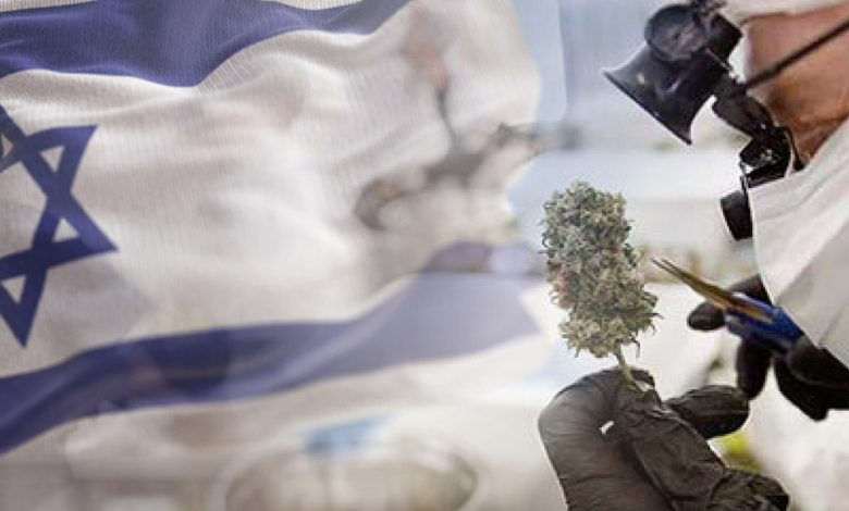 Photo of Israel es referencia en cannabis medicinal y ahora va por el uso recreativo