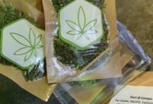 "Photo of Venta de ""cannabis light"" disminuyó la demanda de medicamentos en Italia"
