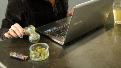 Photo of ¿Afecta el cannabis el rendimiento laboral?